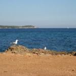 Ibiza 2011 166